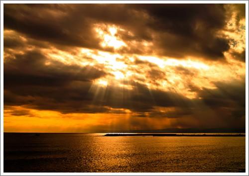 sd700_goldenlight9