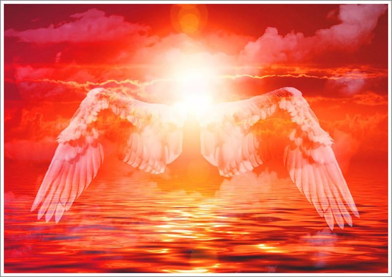 Archangel Excellent