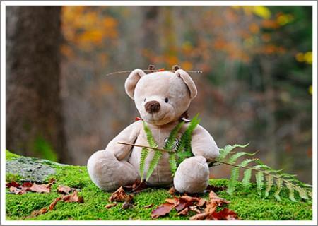 sd_teddy-bear