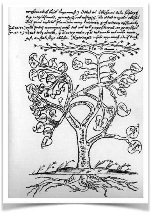 リーナ・エダ ANCIENT WISDOM 人類の深遠なる叡智 古代の叡智に触れる